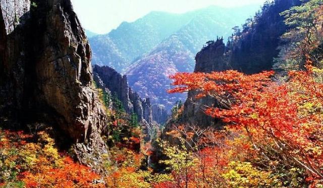 调查:九成韩专家认为需重启金刚山旅游项目
