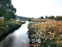 오산천 옛 모습 찾나?…환경부, 오산천 우수하천으로 선정