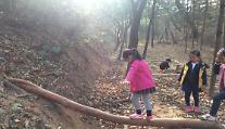 세종시, 원수산 '파랑새유아숲체험원' 인기