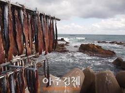 포항지역 침체된 경기 활성화, 포항 구룡포과메기 소비촉진 홍보