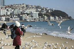 .韩国釜山瞄准台湾游客推介冬日游.