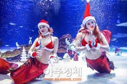한화 아쿠아플라넷에서 즐기는 진짜 크리스마스