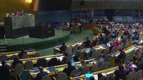 联大连续13年通过涉朝人权决议案