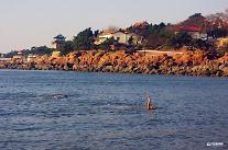 [영상중국] 칭다오 해변서 겨울수영, 70대 할아버지도 '어푸' '