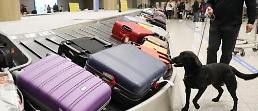 .韩国机场港口将强化安检 所有旅客行李需照X光.