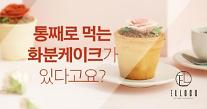 펀딩포유 '엘로코 DIY 화분 컵케이크' 후원형 크라우드펀딩 진행