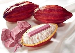 Nestle unveils natural pink Ruby chocolate: Yonhap