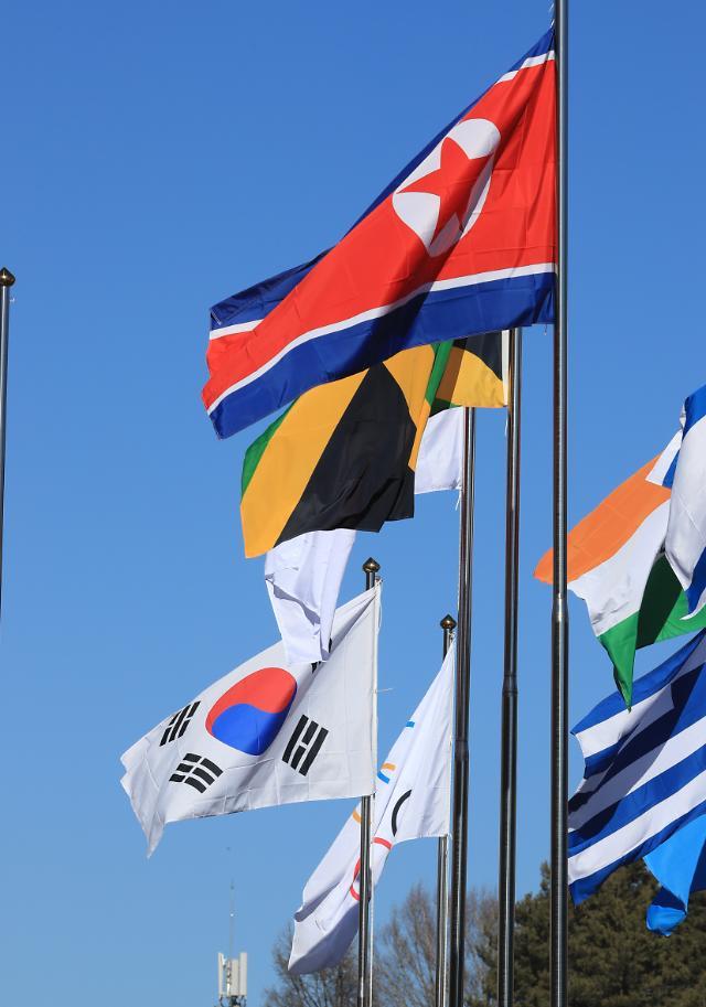 朝鲜人共旗时隔4年在韩飘扬
