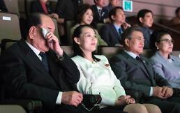 .文在寅和金与正一同观看朝鲜艺术团演出.