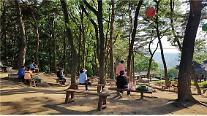 산림조합, '연 107만t 부유먼지 등 흡수' 나무심기 장려