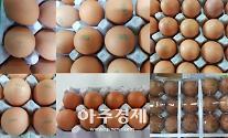 '살충제 파동' 겪은 계란, 4월부터는 표기 바뀐다
