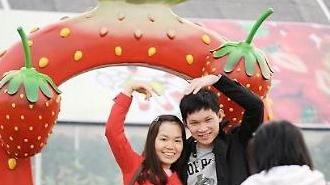 [가볼 만한 축제 여행]4월, 신나는 축제 따라 봄 여행 가즈아!
