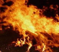 안동 화재, 한 음식물자원화 시설서 불 났다(1보)