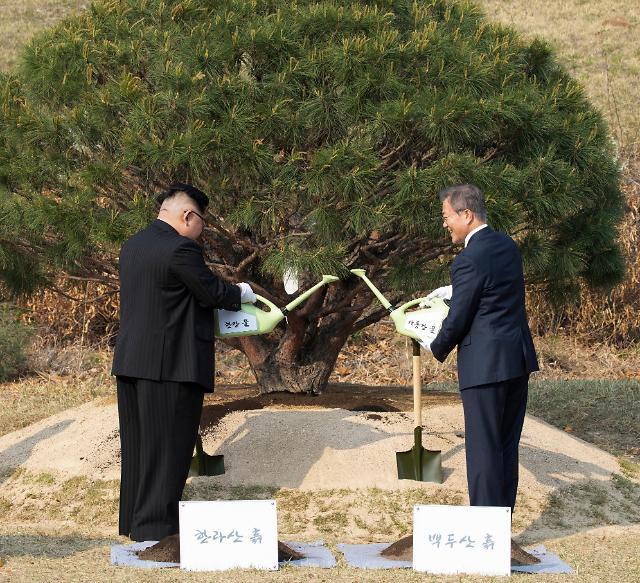 朝韩领导人共同种松树 象征和平繁荣