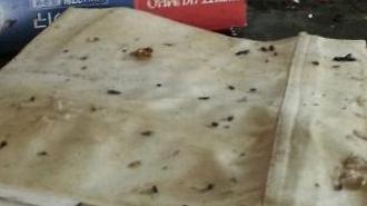 [포토] 맛집의 충격 위생상태