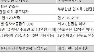 [단독] 버팀목·디딤돌대출 '소득'에 더해 '자산'도 들여다본다
