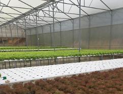 Ứng dụng nông nghiệp công nghệ cao gắn với phát triển du lịch Đà Lạt – Lâm Đồng