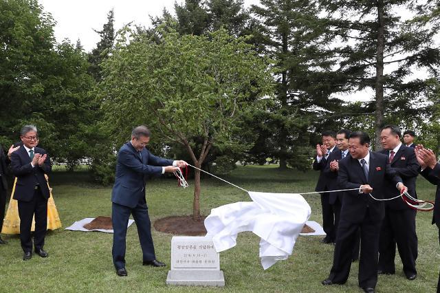 文在寅在百花园迎宾馆种下繁荣之树