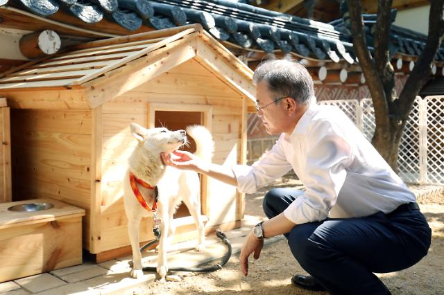 President Moon happy with six puppies from dog sent by N. Korean leader