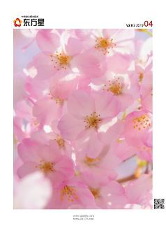 찾았다! 축제보다 아름다운 서울 벚꽃 명소