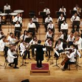 서울팝오케스트라