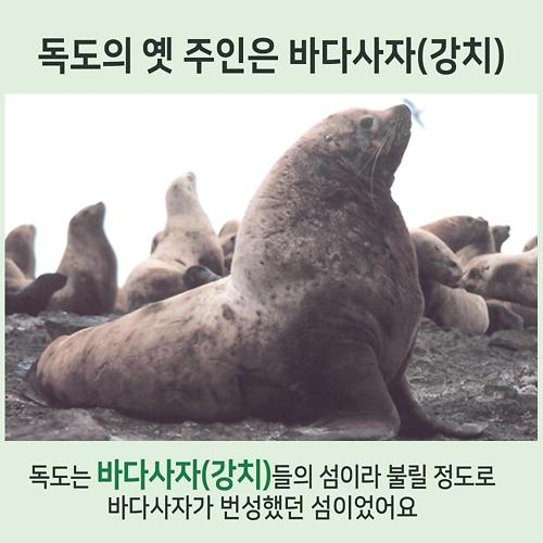 [아주 쉬운 뉴스 Q&A] 독도 강치 뭐길래, 내년 예산 14조 편성?