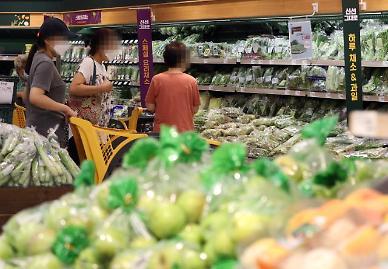 역대 최장 장마에 호박·오이 채소 가격 들썩
