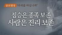 [금요명상] 식색에 빠진 대한민국에 던지는 다석 류영모의 메시지 '짐승은 종족보존, 인간은 진리보존'