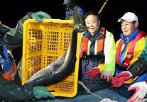 올해 10∼12월분 어선원보험료 30% 감면
