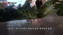 """전봉민 父, 편법 증여 의혹 취재 기자에 """"3000만원 줄게"""""""