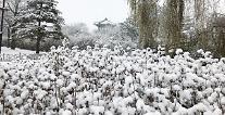 [내일날씨] 전국 곳곳 눈·비…기온 최저 '영하 5도' 뚝