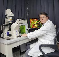 삼성 1.5兆 연구비로...카이스트 연구팀 '뇌의 기억 유지법' 비밀 풀었다