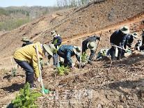 [포토] 유한킴벌리, 탄소중립을 위해 나무심기에 참여해요