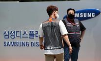 삼성디스플레이 노사, 파업 14일 만에 임금협상 최종합의