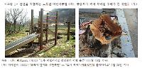 서울 공원 69%가 20년 이상 노후공원...건산연 공원 재정비 필요