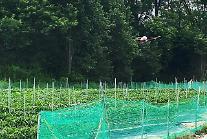 팜한농, 병해충·잡초 방제 대행 서비스 제공 중