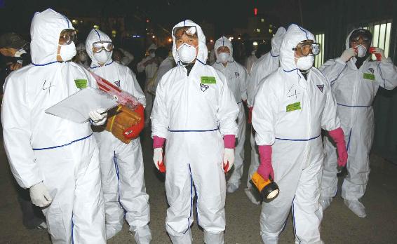.首尔将宰杀全部家禽防控禽流感.