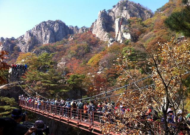 登山客享受山间满山红叶