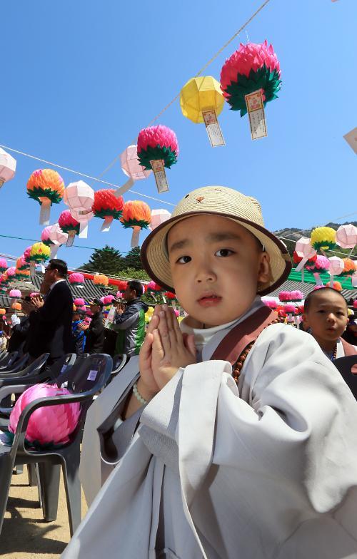 韩国信徒虔诚迎接佛诞日