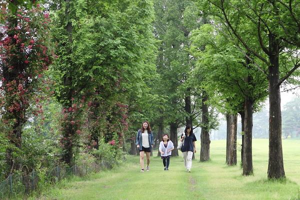 瑞山三源休闲小镇:体验露营、骑马、高尔夫三重享受