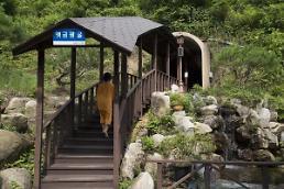 .夏日激情下的身心熏陶——韩国完州梦幻之旅.