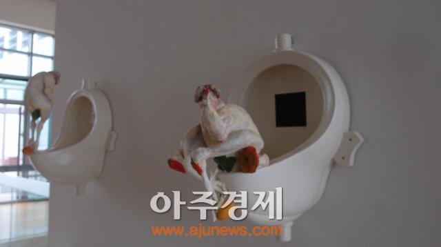 [2014부산비엔날레] 변기에서 볼일보는 닭, 사람잡네~