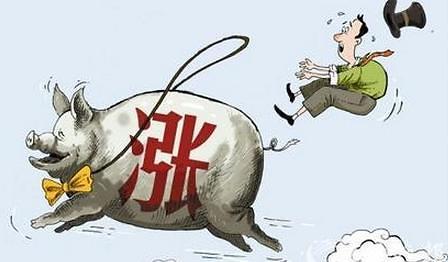 2011년 인플레의 추억, 중국 돼지고기 가격 급등...중국, 전세계 돼지고기 소비량의 절반 차지