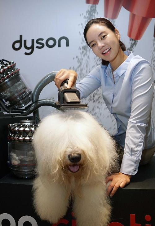 Dyson unveils new machine to groom pets