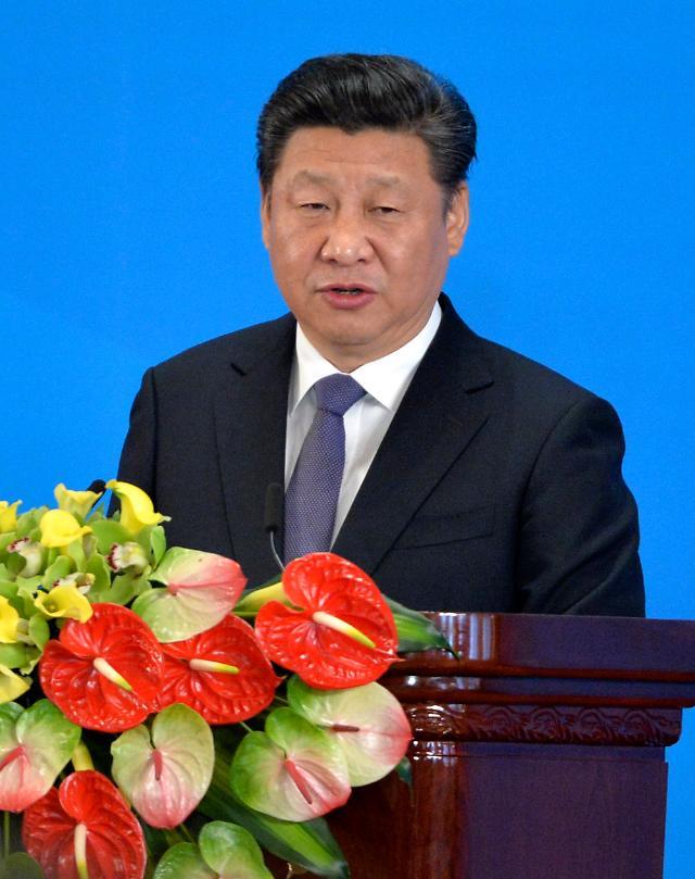 중국 시진핑, 북한 김정은 노동당 위원장 추대에 축전 (종합)