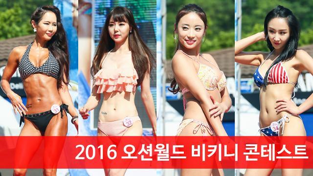 [아주동영상] 2016 오션월드 비키니 콘테스트 (노지영, 김두연, 권미래, 김린아)