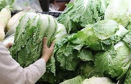 .韩9月份农林水产品生产者价格指数史上最高 白菜、萝卜涨幅逾30%.