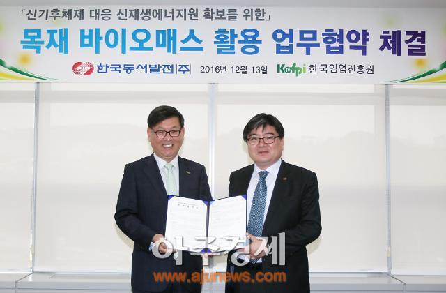 동서발전, 국내 최초 발전업-임업 융복합 사업 추진