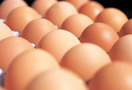 .Bird flu leads to high egg prices and consumer hoarding in S. Korea  .