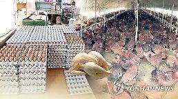 .韩禽流感扩散 扑杀家禽已超过3千万只.